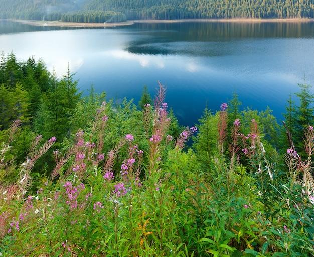 Vue du soir d'été du lac de montagne vidra