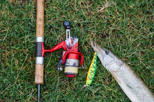Vue élevée de la canne à pêche avec crochet dans le poisson sur l'herbe verte