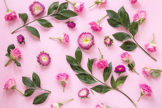Vue élevée, de, fleurs, et, feuilles, sur, surface rose