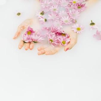Vue élevée de la main humide d'une femme avec des fleurs roses dans l'eau du bain