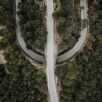 Vue élevée de la route droite et courbe en forêt