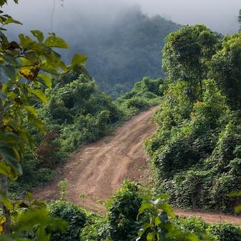 Vue élevée de la route de terre, luang prabang, laos