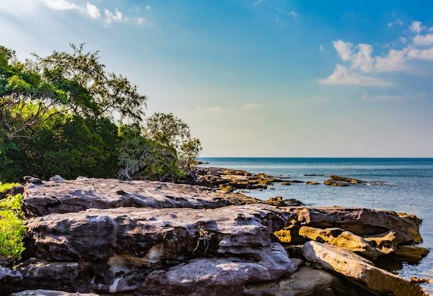 Vue d'ensemble du premier voyage à kood island, c'est très beau