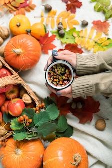 Vue d'ensemble des mains humaines tenant du thé chaud aux herbes parmi les citrouilles mûres, les pommes et les feuilles d'automne