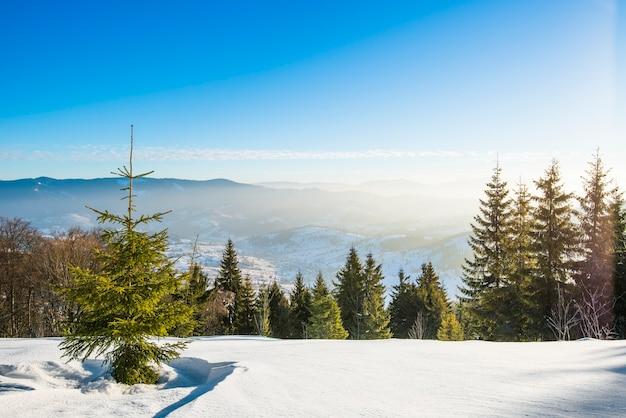 Vue envoûtante de la piste de ski avec une vue magnifique sur la forêt de conifères de la colline enneigée et les chaînes de montagnes ensoleillées par temps clair et glacial