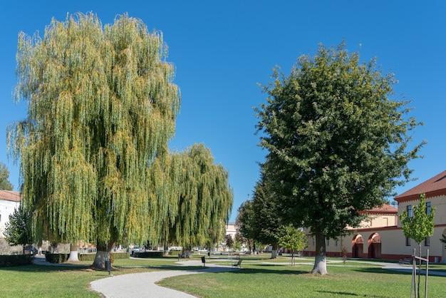 Vue de l'espace vert à prejmer transylvanie roumanie