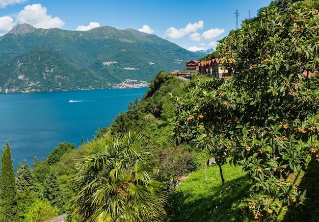 Vue d'été du lac de côme alpin depuis la rive (italie)
