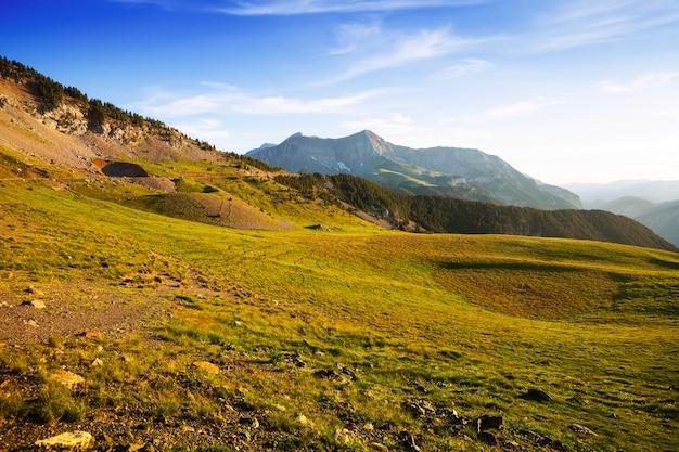 Vue d'été de prairie des hautes terres