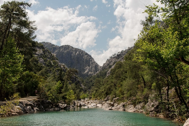 Vue étonnante au lac dans les montagnes