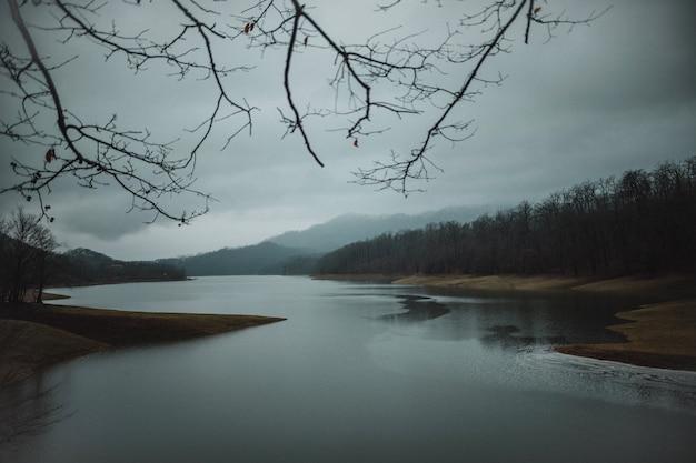 Vue de face du paysage avec des collines d'arbres et une belle rivière