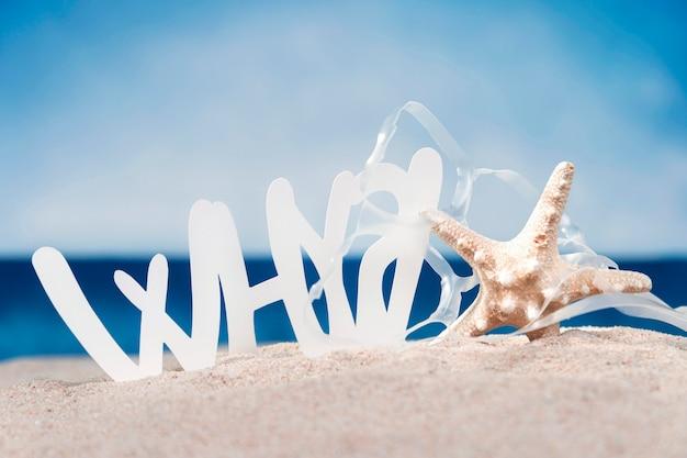 Vue de face de l'étoile de mer avec du plastique sur la plage