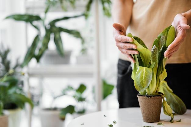 Vue de face de la femme cultivant des plantes à l'intérieur avec copie espace