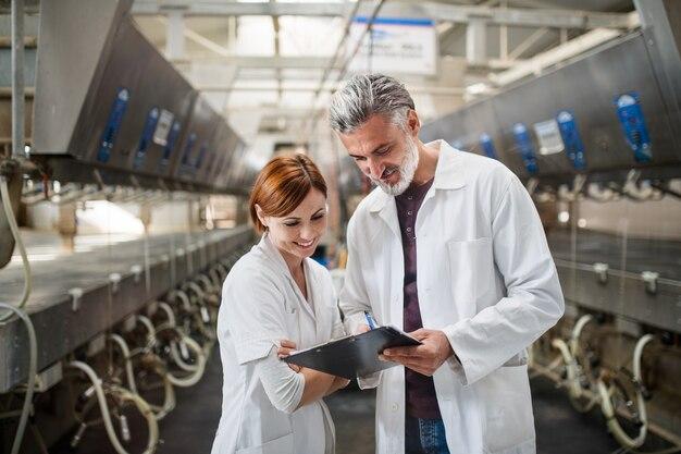Vue de face d'hommes et de femmes gestionnaires travaillant dans une ferme laitière, industrie agricole.