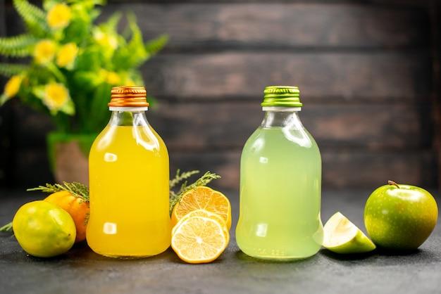 Vue de face jus de citron et de pomme citrons tranches de citron pommes plante en pot