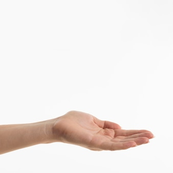 Vue de face de la main demandant quelque chose