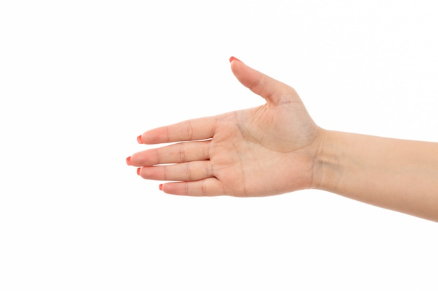 Une vue de face de la main féminine avec des ongles de couleur poignée de main sur le blanc