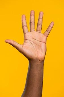 Vue de face main ouverte