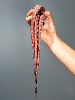 Vue de face de la main tenant une pieuvre fraîche