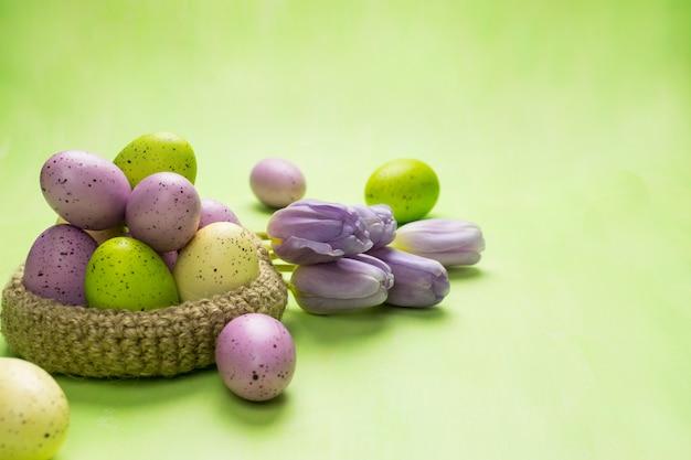 Vue de face d'un oeufs de pâques colorés dans un panier et des tulipes violettes sur fond vert.
