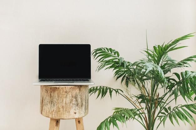 Vue de face d'un ordinateur portable sur un tabouret en bois et un palmier tropical