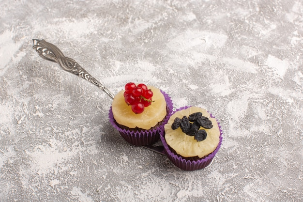 Vue de face petits gâteaux au chocolat délicieux et sucrés sur gris