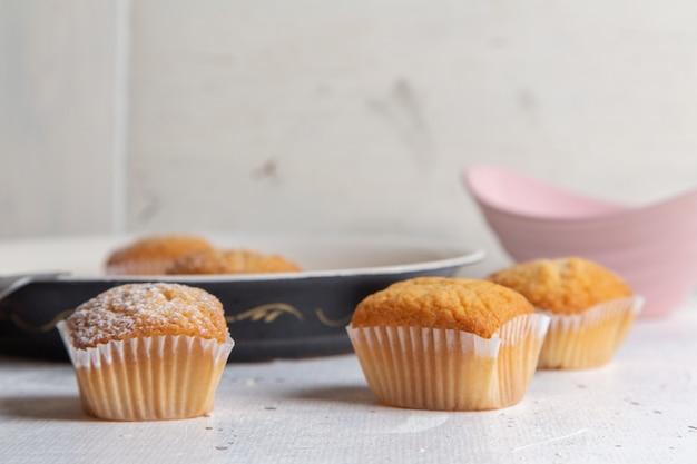 Vue de face de petits gâteaux délicieux avec du sucre en poudre sur la surface blanche