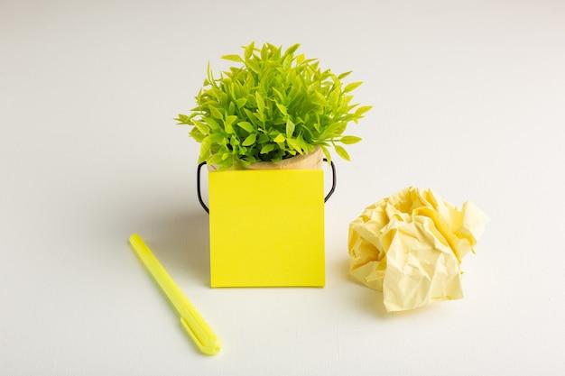 Vue de face plante verte avec autocollant et stylo sur surface blanche