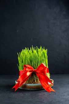 Vue de face de semeni de vacances vert avec arc rouge sur une surface sombre