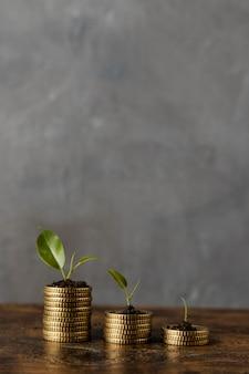 Vue de face de trois piles de pièces avec des plantes et de l'espace de copie
