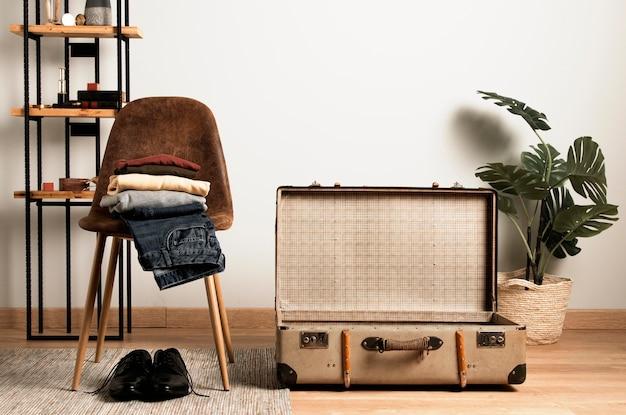 Vue de face valise vintage et plante d'intérieur