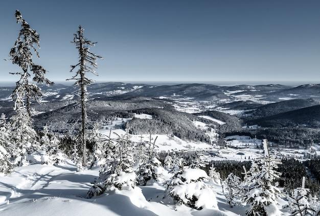 Vue fascinante sur les champs avec des collines couvertes de neige sous le ciel bleu