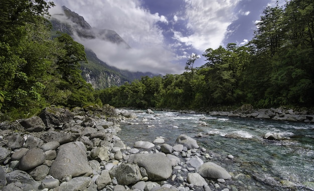Vue fascinante sur une rivière coule sur des rochers à travers les bois sous un ciel pittoresque