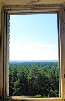 Vue sur la forêt à travers un cadre de fenêtre d'une maison abandonnée