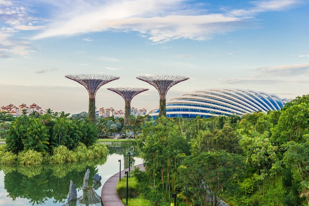 Vue futuriste d'une incroyable illumination au garden by the bay