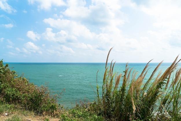 Vue générale de l'île tropicale depuis la mer