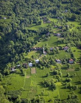 Vue grand angle de collines couvertes de forêts et de bâtiments sous la lumière du soleil