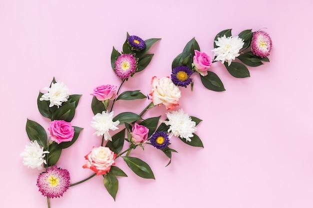 Vue grand angle de fleurs fraîches sur fond rose