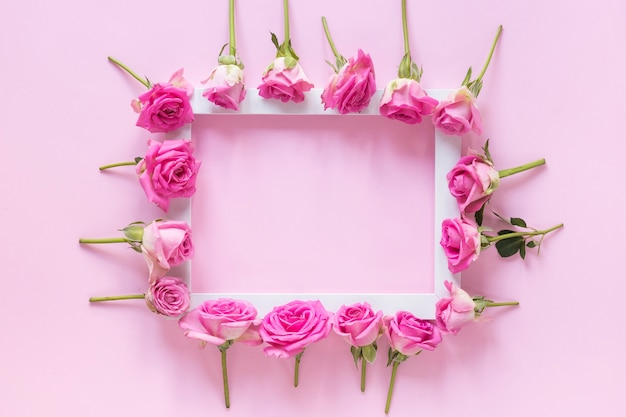 Vue grand angle de fleurs roses entourant cadre sur fond rose