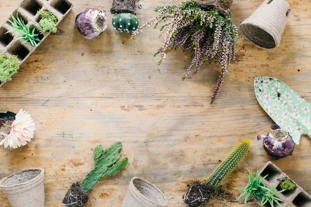 Vue grand angle d'une plante succulente; plateau de tourbe; pot de tourbe et truelle organisant sur fond en bois
