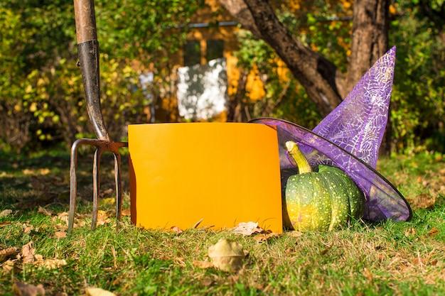 Vue de halloween citrouilles, chapeau de sorcière et rateau à l'extérieur