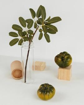 Vue de haut abstraite plante minimale
