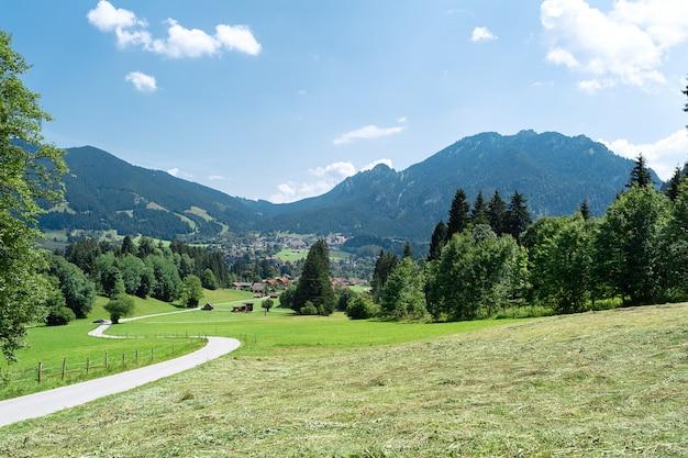 Vue de l'herbe tondue et de la route allant au loin dans le contexte des montagnes.