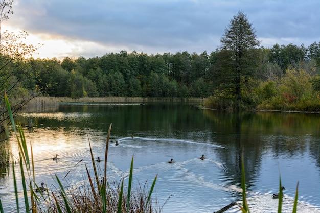 Vue imprenable sur le célèbre lac bleu avec lever de soleil et ciel orange sous des nuages denses. kazan, russie. les canards nagent le matin. paysage d'automne.