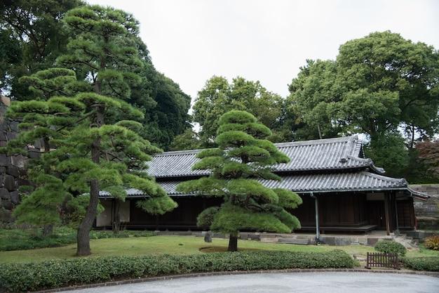 Vue imprenable dans le jardin japonais