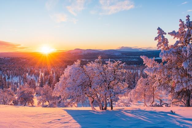 Vue imprenable sur une forêt couverte de neige au coucher du soleil en norvège