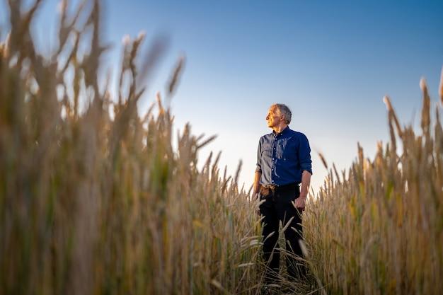 Vue imprenable avec un homme qui vérifie la récolte biologique naturelle à la lumière du coucher du soleil. vue d'en bas. mise au point sélective.