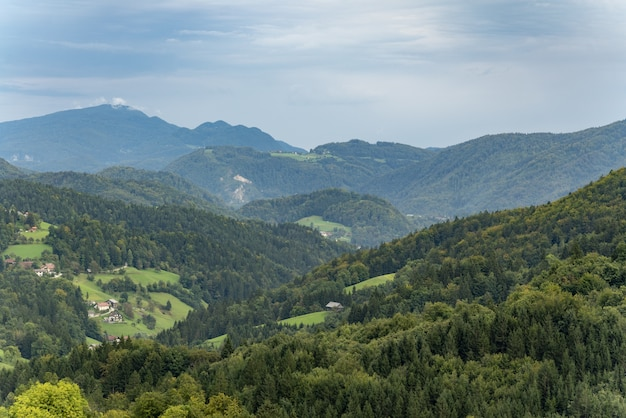 Vue imprenable sur les montagnes couvertes d'arbres sous le beau ciel bleu