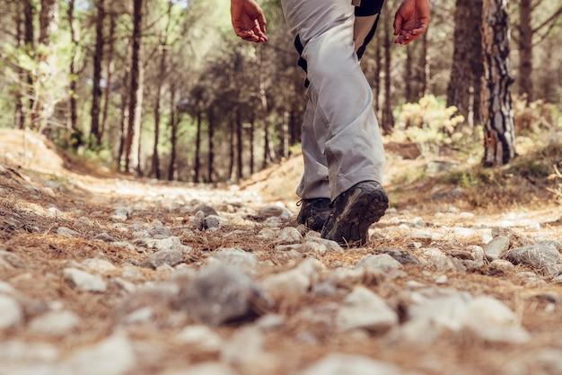 Vue sur les jambes du randonneur en forêt