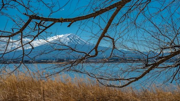 Vue sur le lac fuji