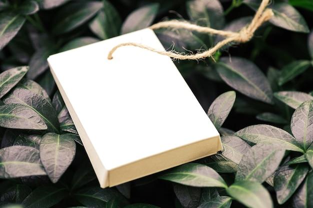 Vue latérale d'une boîte pliée en carton avec corde de jute pour accessoires sur fond de feuilles de pervenche ...